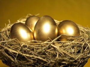 nest-egg-4_3